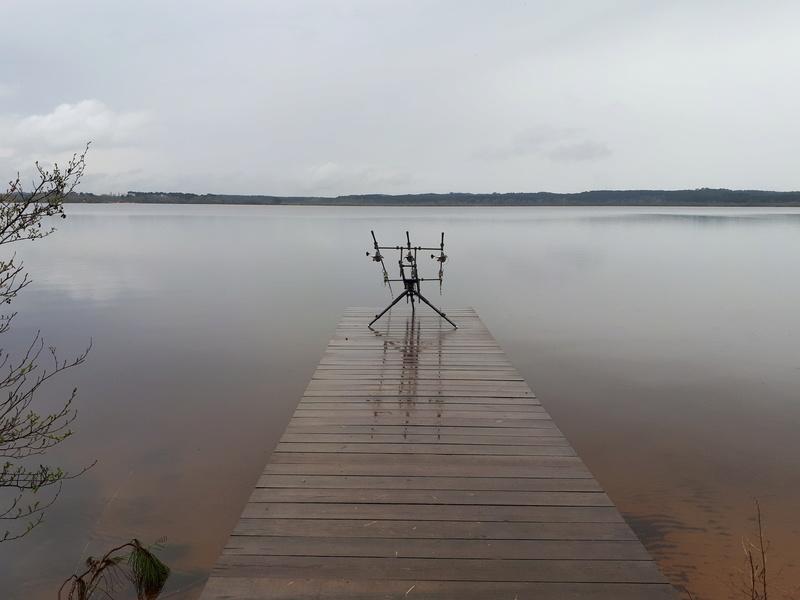 Recherche infos sur le lac Léon dans les Landes  - Page 2 20180417