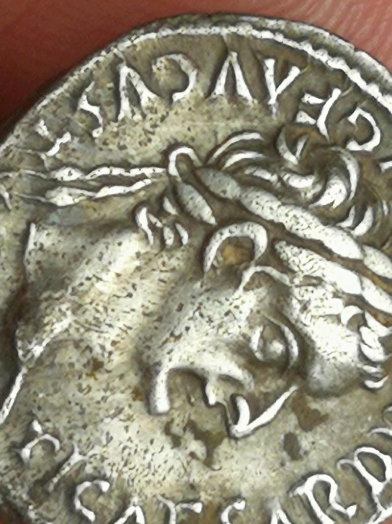 Denario de Tiberio. PONTIF MAXIM. Livia, de Paz, sedente a dcha. Lugdunum. - Página 3 Img_2032