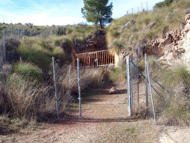 grupo mineralogico de alicante - Grupo Mineralógico de Alicante 0111