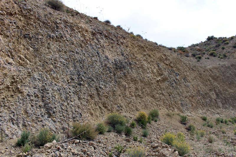 grupo mineralogico de alicante - Grupo Mineralógico de Alicante 2410