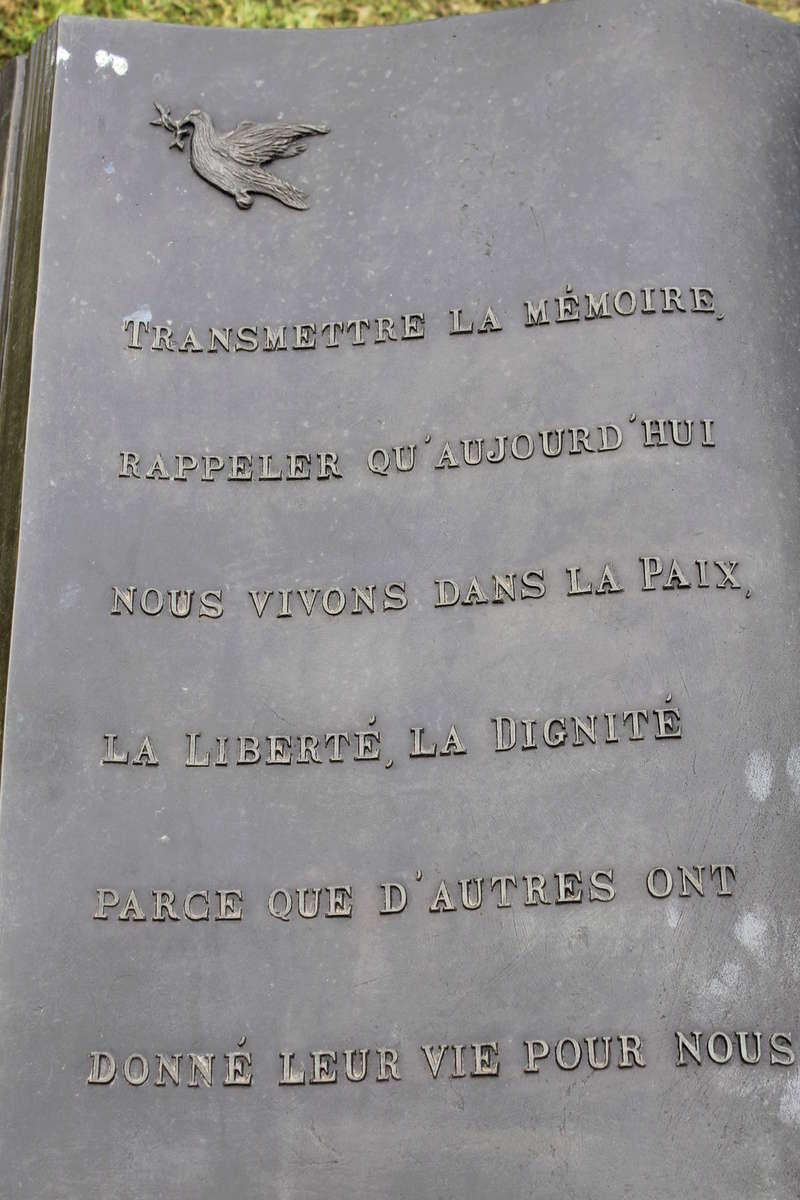Site des parachutistes de LA FIERE  Img_1113