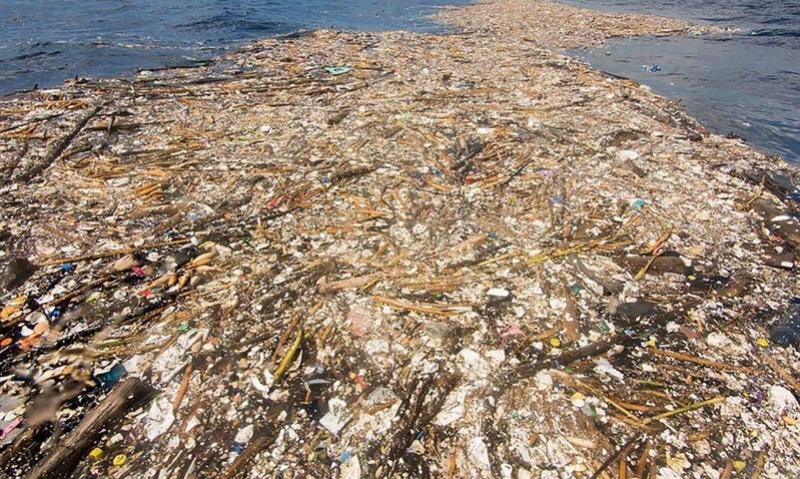 Des photographies inquiétantes des Caraïbes montrent une mer de plastique et de polystyrène 214
