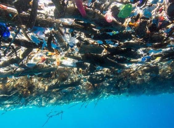 Des photographies inquiétantes des Caraïbes montrent une mer de plastique et de polystyrène 410