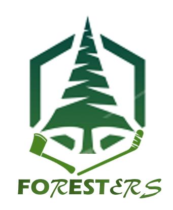Quelle nouvelle identité ? - Page 2 Forest10