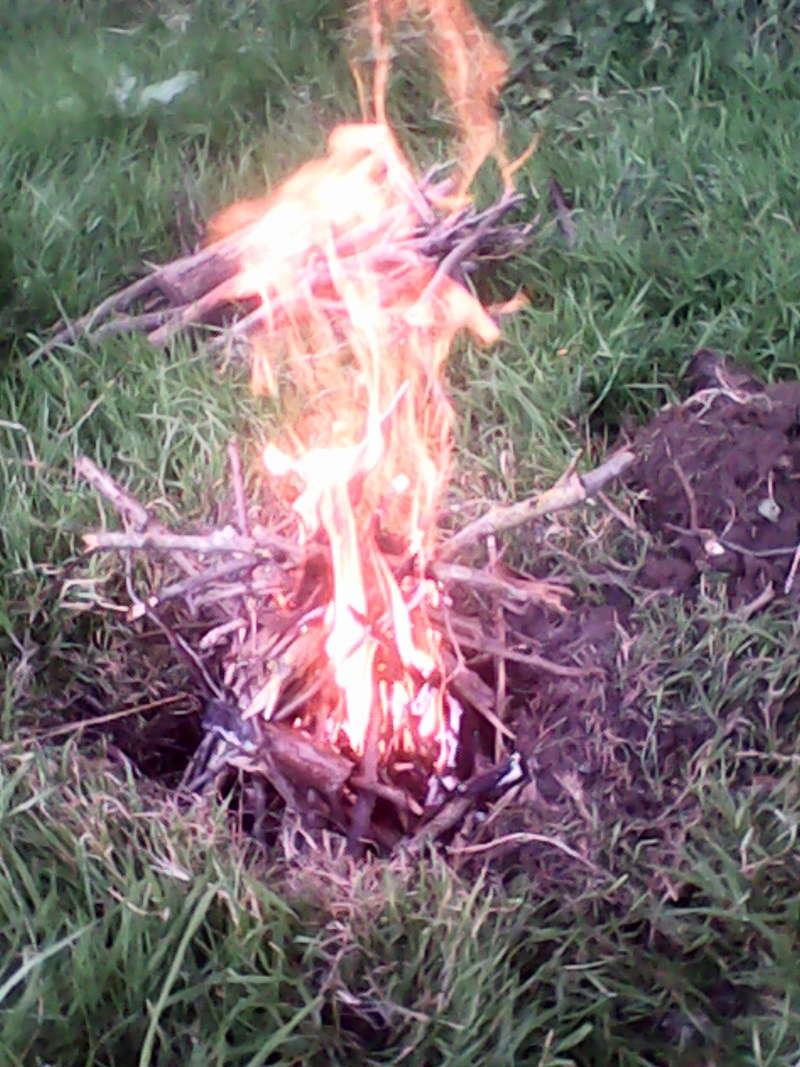 préparer, allumer et entretenir un feu Img_2023