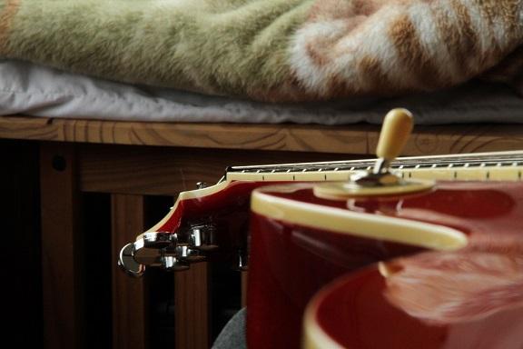 Je cherche une Guitare Agile LP (Les Paul) avez-vous ca ? A10
