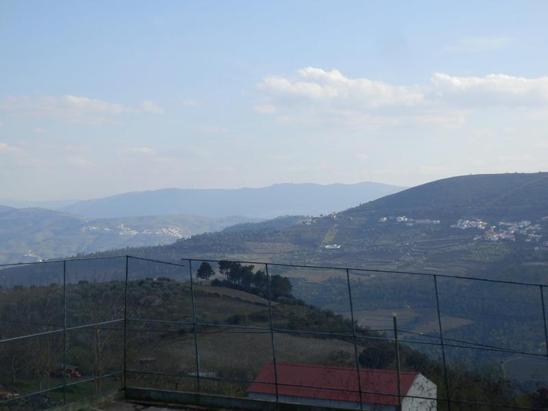 Passeio pelo Douro P4140718