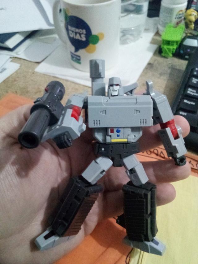 Transformers Meg11