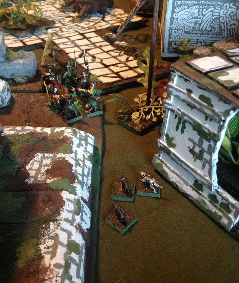 Jungleheim Warden46
