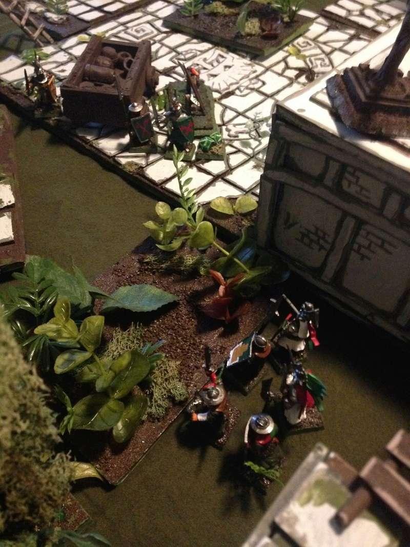 Jungleheim Warden49