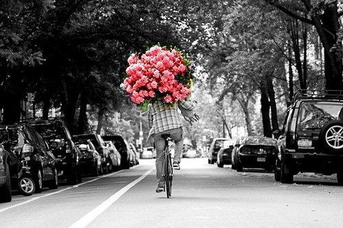 Cveće i romatika - Page 3 Tumblr11