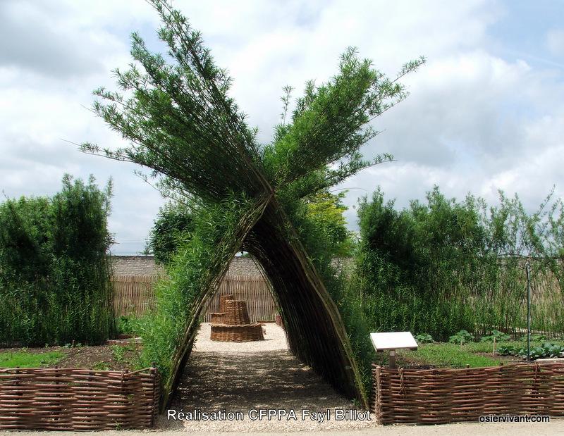 Bambous sur leboncoin 15-arc10