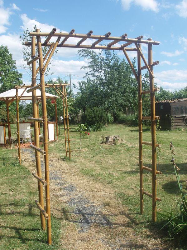 Bambous sur leboncoin 65490710