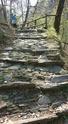 Escursione a Monteviasco Montev13