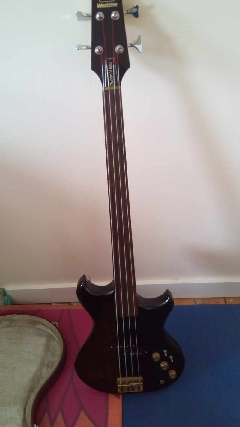 BASS - Thunder 1 A Fretless bass Img_2012