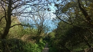 L'île de Guernesey, aussi normande que britannique 7a3a1e10