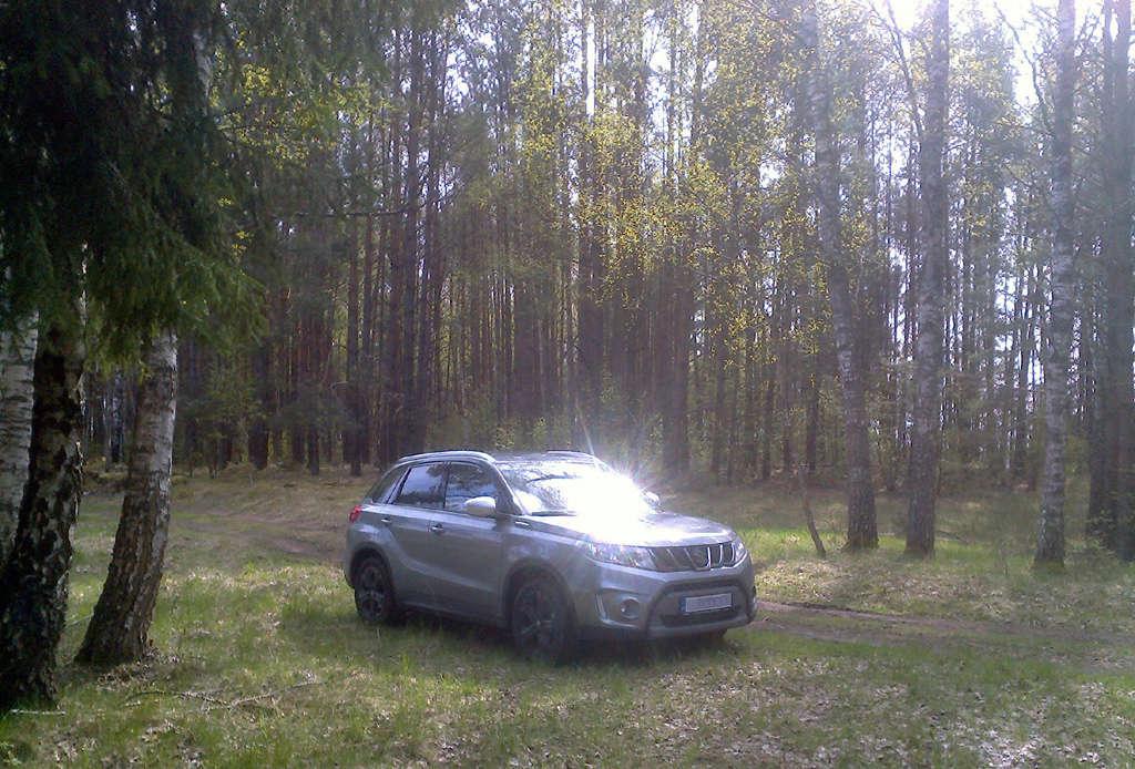 VITARA in Lithuania Vit-211