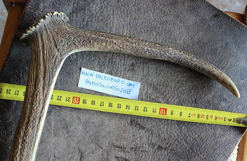 Hoz Neolítica de Asta de Ciervo Hoz112