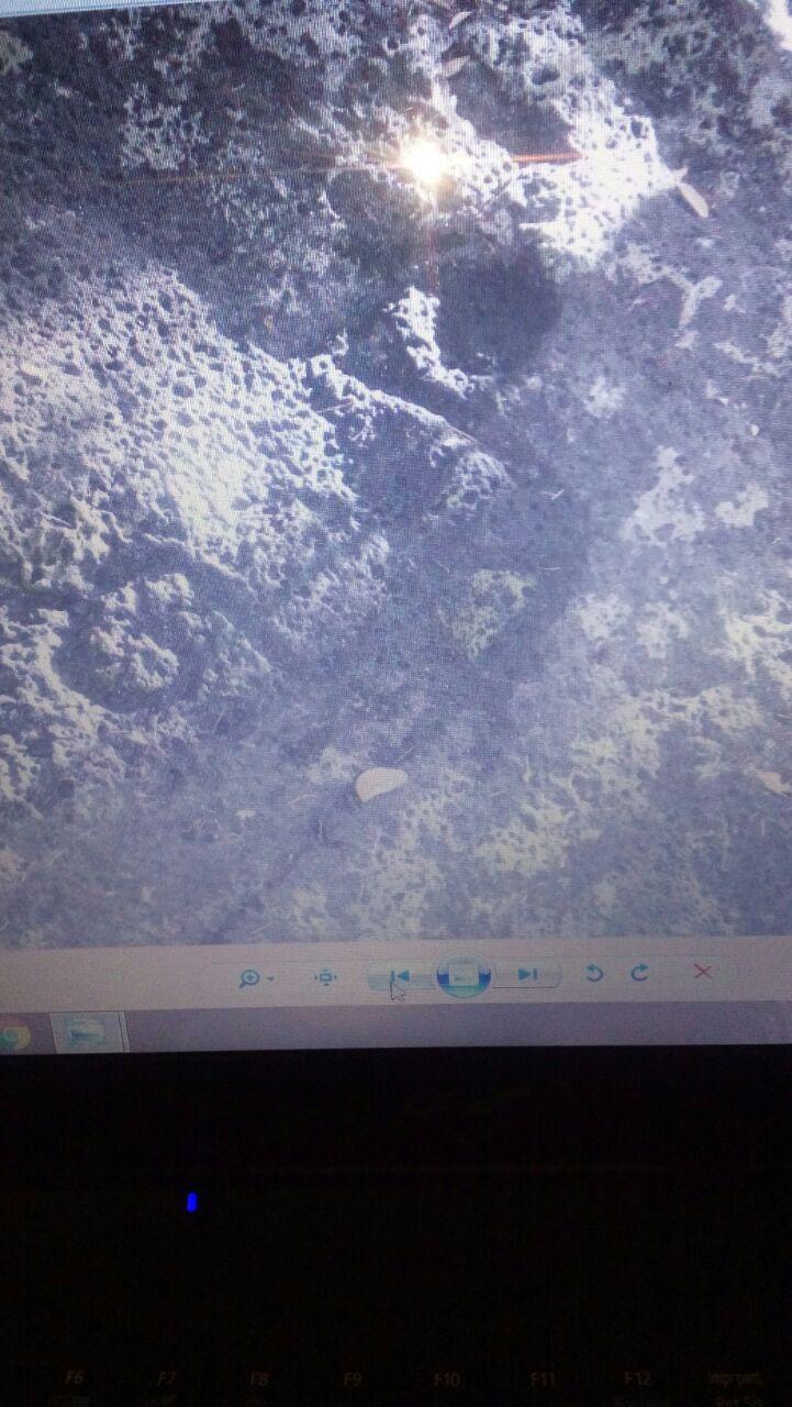 Simbolos en roca - Pistas de una relacion Img-2012