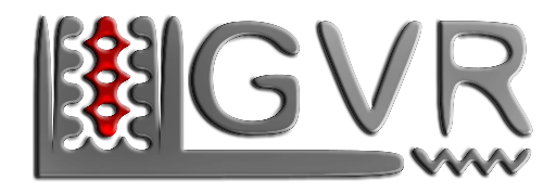 German Virtual Racing Team