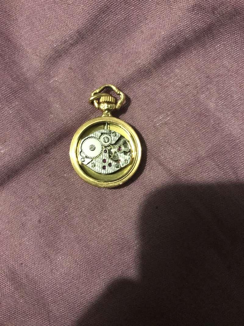 Besoin de renseignement à propos d'une montre à gousset  E544dd10