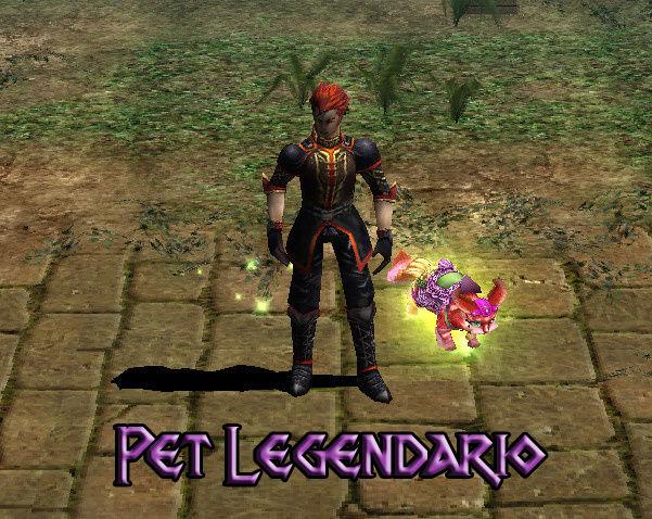 Monturas-Mascotas-Anillos Custom Pet_le10