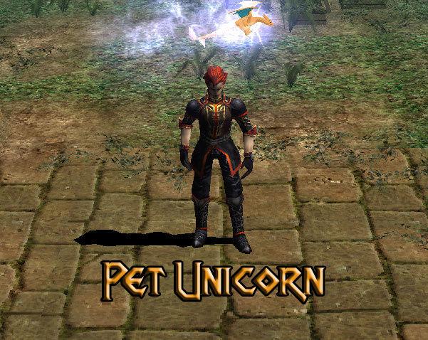 Monturas-Mascotas-Anillos Custom Pet_un10