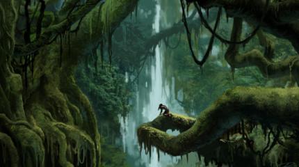 Jungle perdue