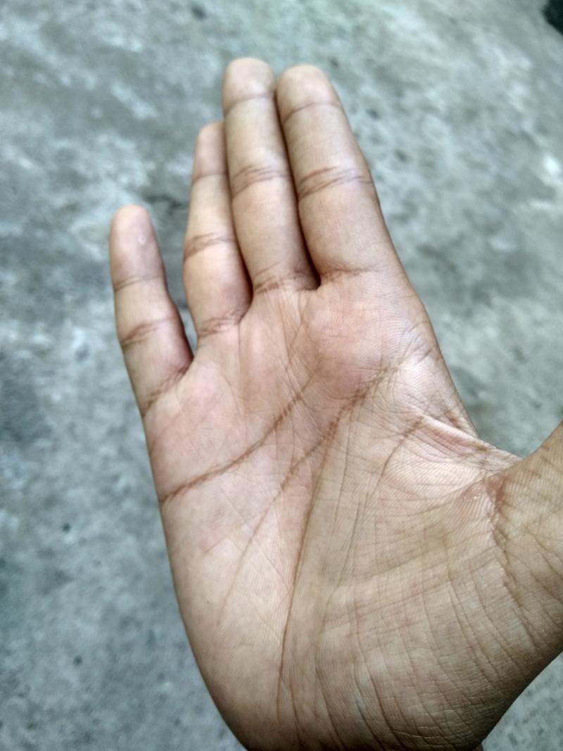 Plz my hand plz..  Img_2020