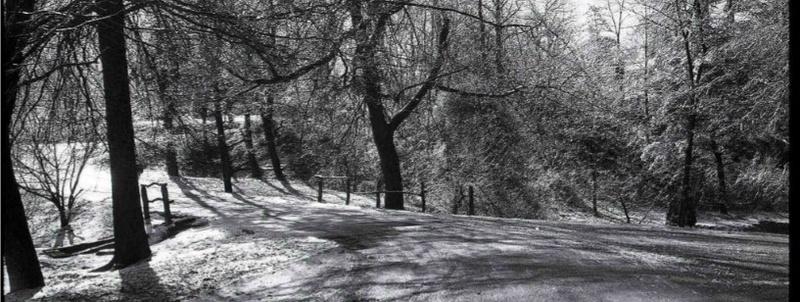 [Tutoriel 03] Le Parc - [Tutorial 03] The Park Park11