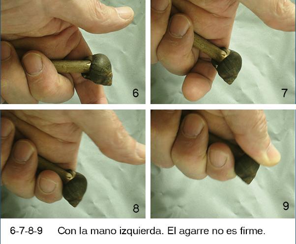 Fricción con arco: bígaro como cojinete II Agarre11