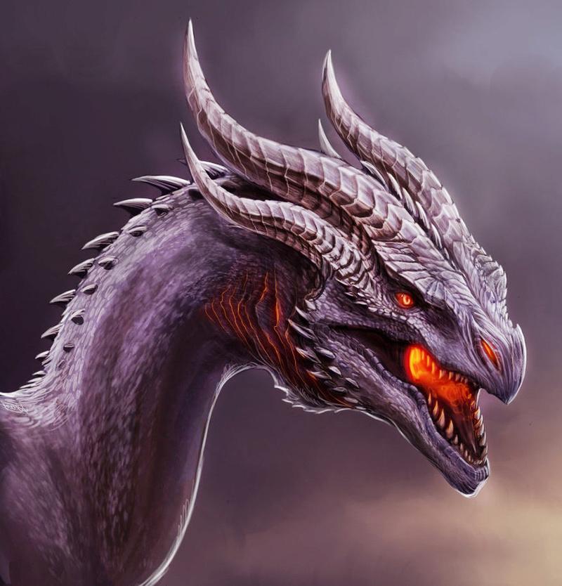 The White Spirit| Bluinse Aodhgan ID Dragon13