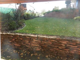 дела садовые - Страница 2 Dscn8910