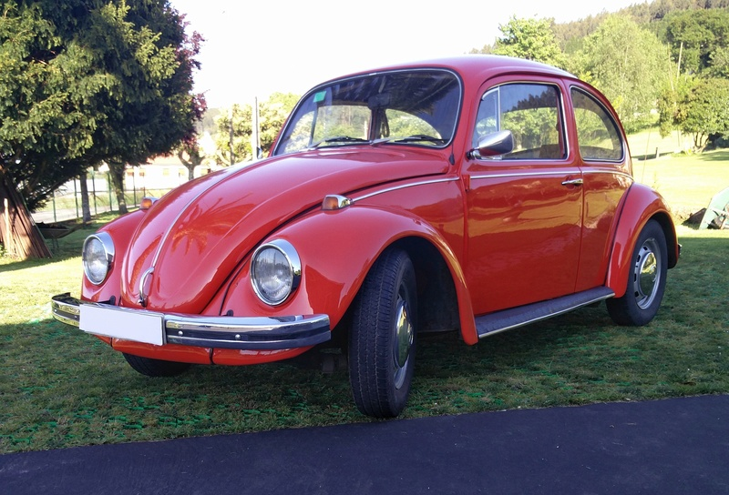 1970 VW Escarabajo Img_2011