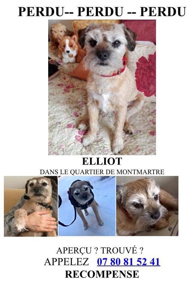 Eliott  D990e010