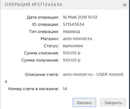 AVTO-MONSTR Z34