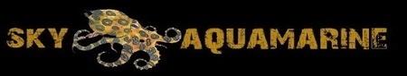 About SKY Aquamarine Imagee10