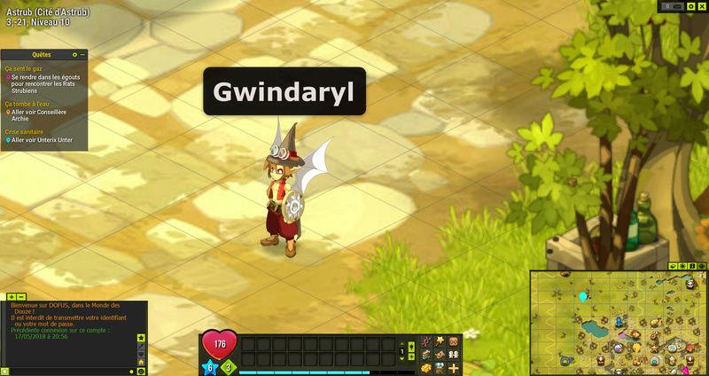 Gwindaryl ! petit qui deviendra grand ! Dofus-10