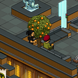 Album photo de Shayrin - Page 2 Habbo_20