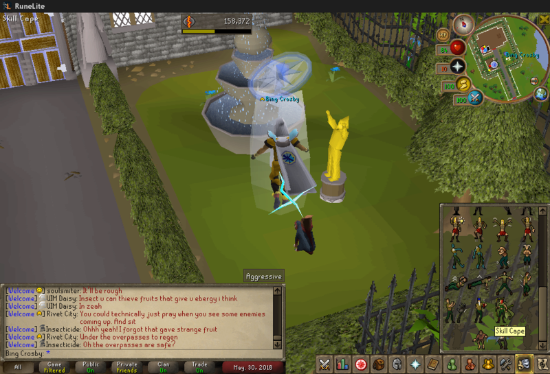 #1 Goal in rs finally achieved!  2018-010