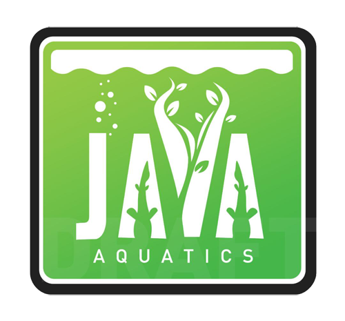 About Java Aquatics Thumbn10