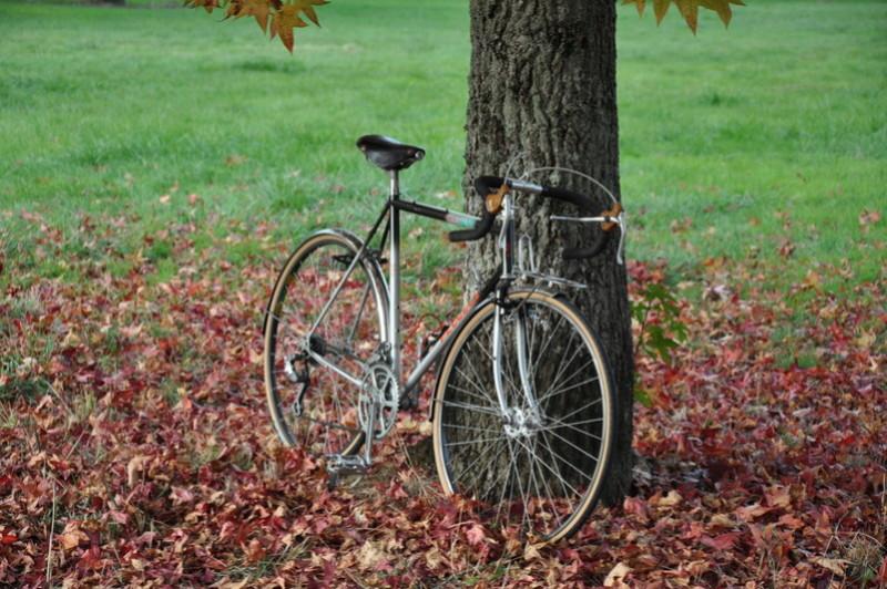 Peugeot cyclo C Y 80BZ Dsc_5320