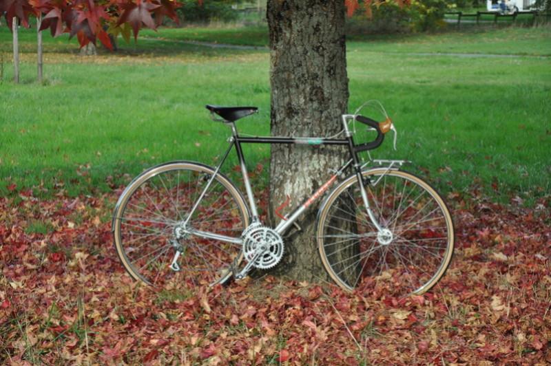 Peugeot cyclo C Y 80BZ Dsc_5321