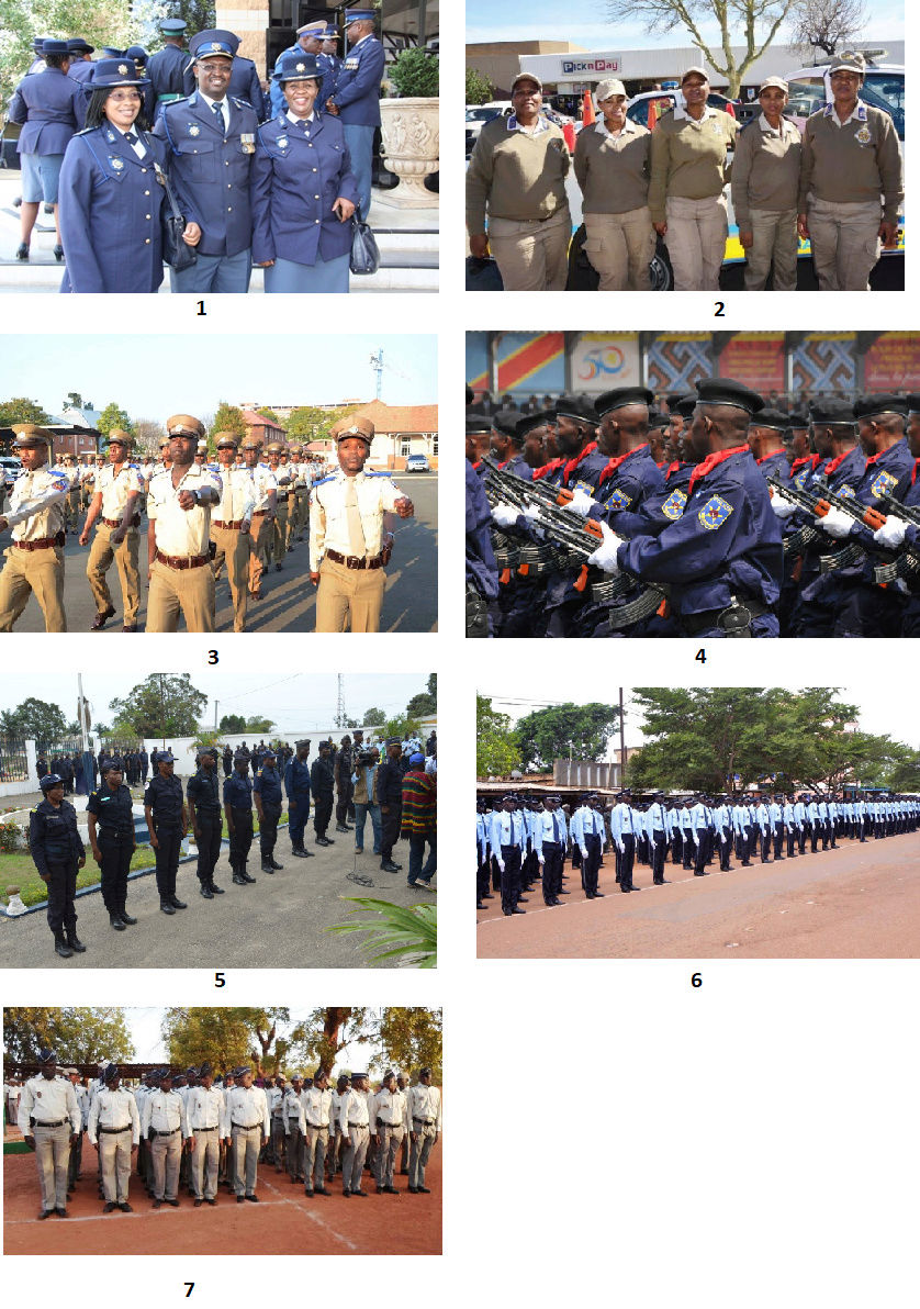 Propositions d'uniformes pour la police et la douane Impériales Votepo10