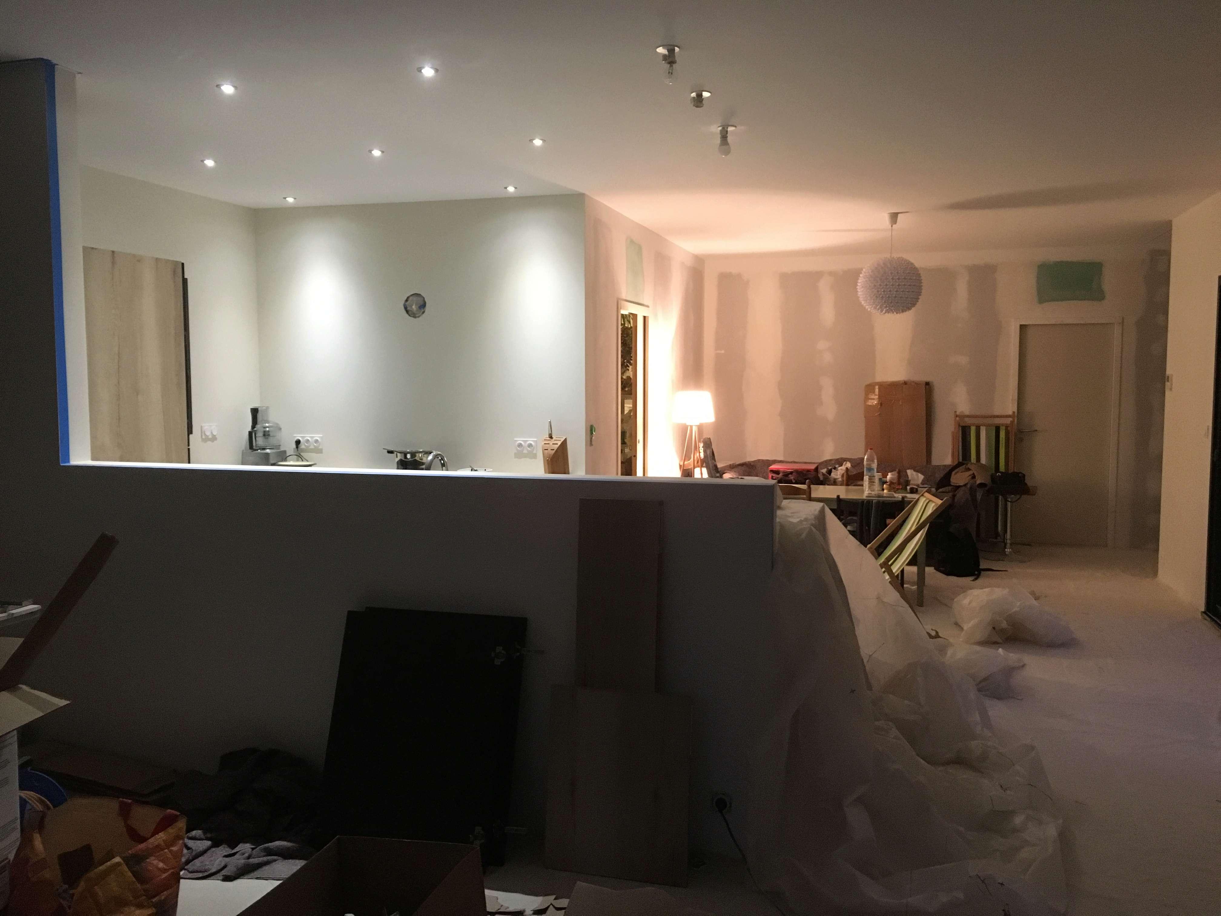 Peinture salon / salle à manger Img_5510