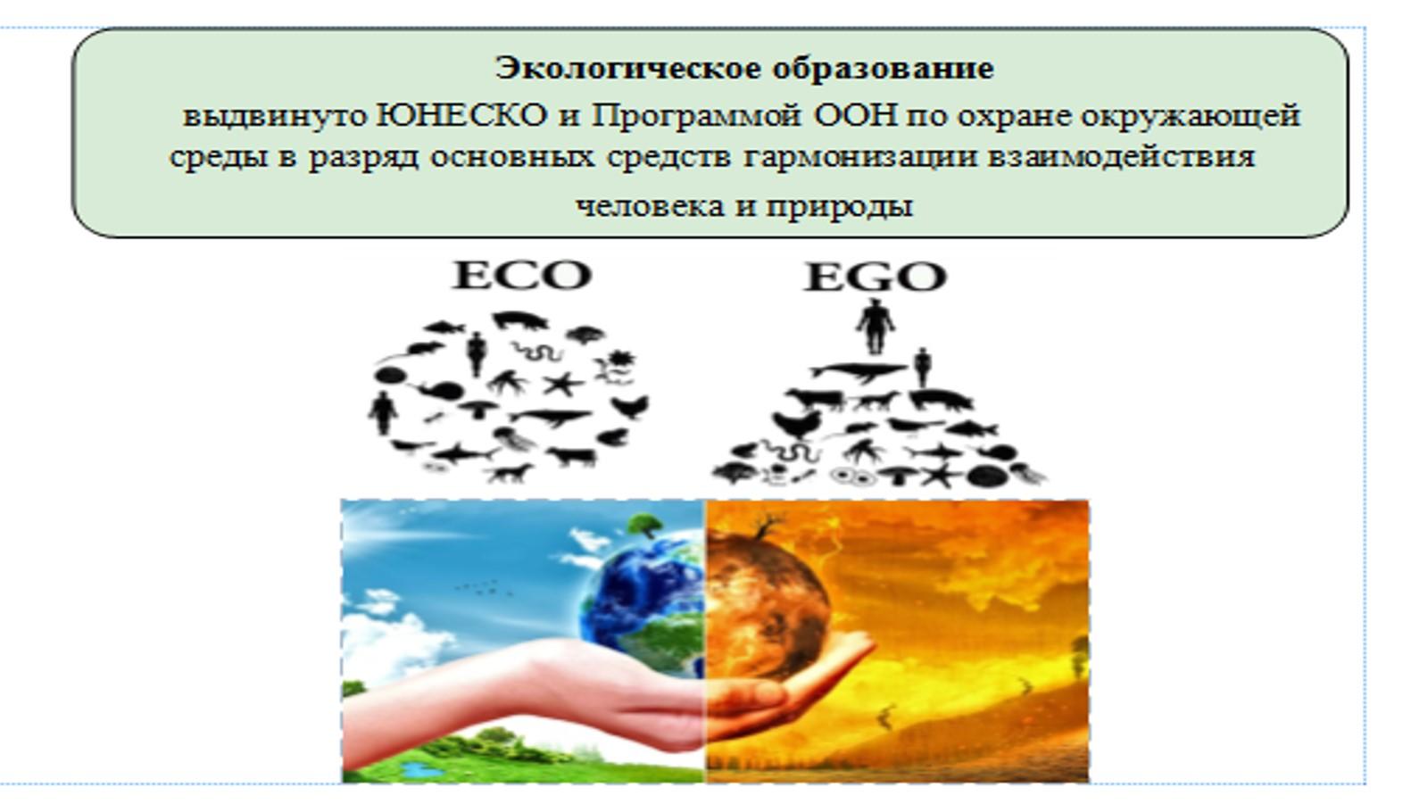 Экологически компетентный человек 21 века  - кто он? 10