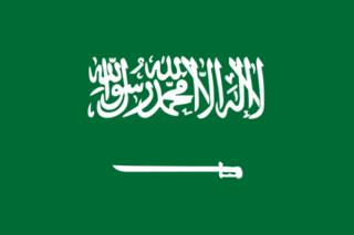 Składy i powołania Flaga-10