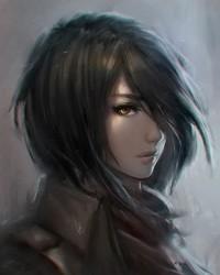 Comté d'Emerald Mikasa12