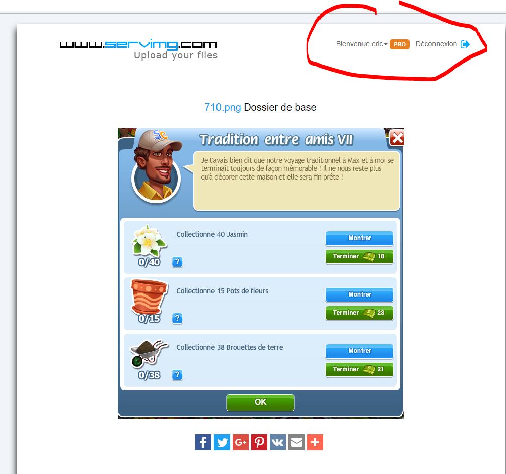 version servimg pro sur mon compte servimg mais pas sur mon forum ! Captur10