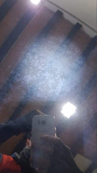 Anomalia Eraser Carpro 20190414